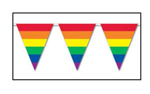 Rainbow Indoor/Outdoor Pennant Banner