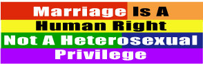 Marriage Is A Human Right Not A Heterosexual Privilege Sticker