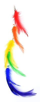Rainbow Feather Hair Extension