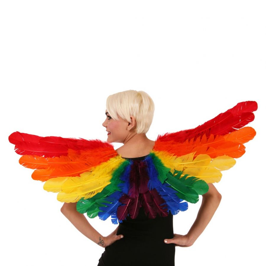 Rainbow Feather Angel Wings