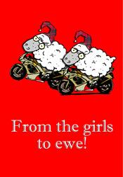 Dyke Sheep Christmas Boxed Holiday Cards