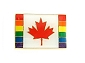 Rainbow Canadian Flag Lapel Pin