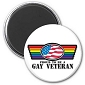 Gay Veteran Magnet