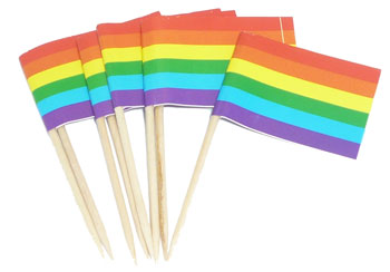 Rainbow Flag Toothpicks (100 box)
