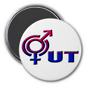OUT Bi Pride Magnet