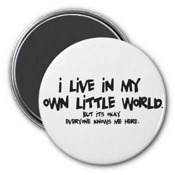 I Live In My Own Little World Magnet
