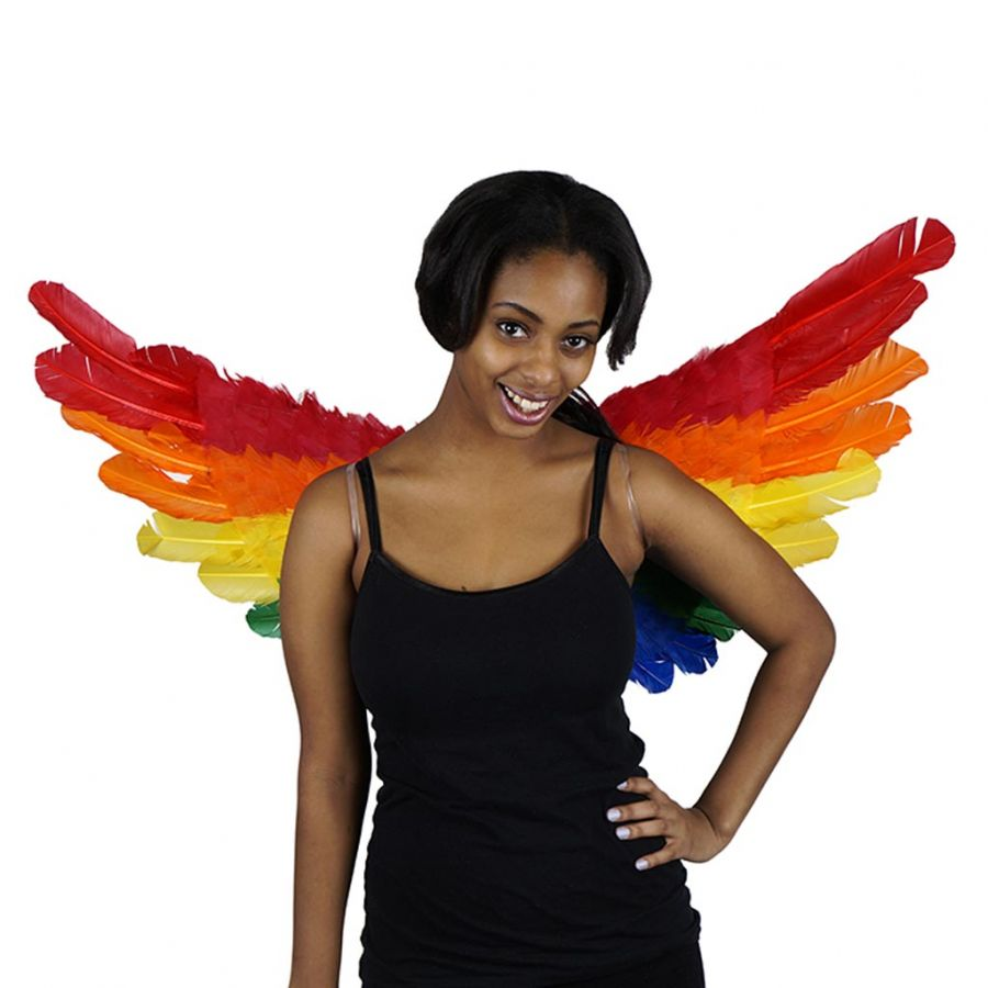 Rainbow Wings (Feathers!)