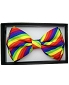 Rainbow Diagonal Stripe Bowtie