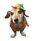 Rainbow Glittering Mini Cowboy Hat