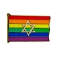 Rainbow Flag Star of David Lapel Pin