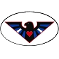 Leather Pride Eagle Oval Sticker