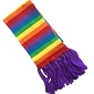 Rainbow Scarf (with purple fringe)