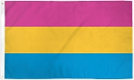 Pansexual Pride 4ft x 6ft Printed Polyester