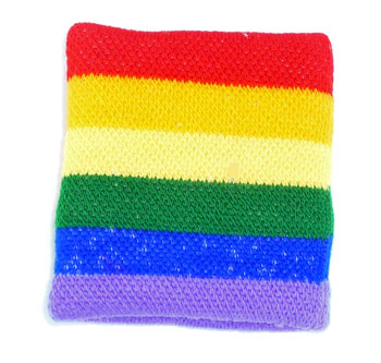 Rainbow Terry Cloth Wristband