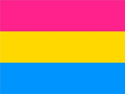Pansexual Flag 3ft x 5ft Printed Polyester
