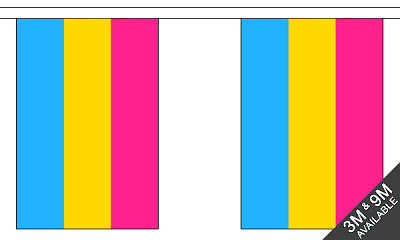 Pansexual String Flags Banner