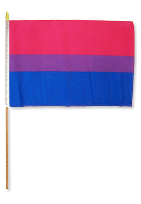 Bisexual 12'' x 18'' Flag on a Stick