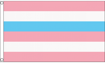Intersex Flag (pink/blue) 3ft x 5ft  Printed Polyester