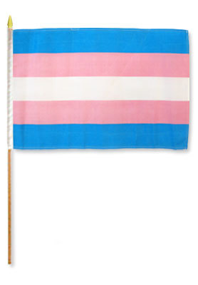 Transgender 12 X 18 Flag On A Stick Gay Straight Alliance