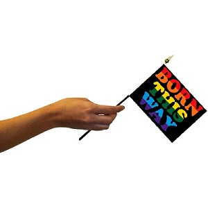 Born this Way 4'' x 6'' Flag on a Stick