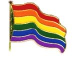 Rainbow Wavy Flag Lapel Pin