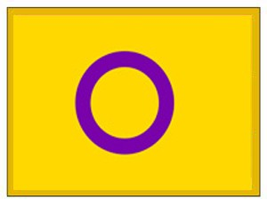 Intersex Flag Lapel Pin