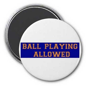 Ball Playing Allowed Magnet