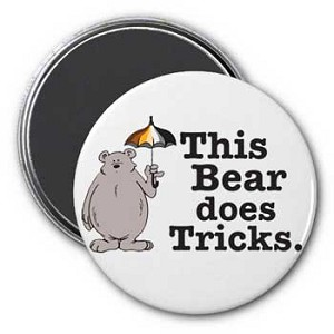 This Bear Does Tricks Magnet