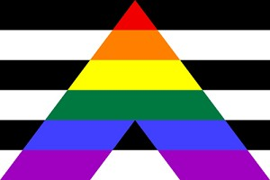Gay Straight Ally Flag 3ft x 5ft Printed Polyester