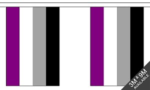 ASexual String Flags Banner