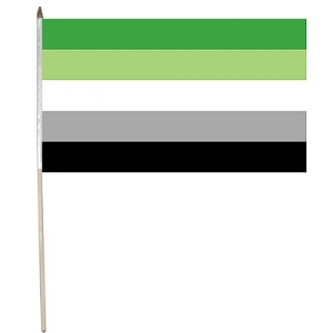 Aromantic 12'' x 18'' Flag on a Stick