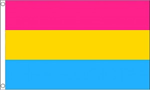 Pansexual Flag 2ft x 3ft Printed Polyester