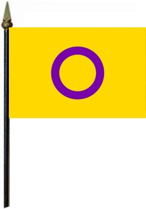 Intersex 4'' x 6'' Flag on a Stick